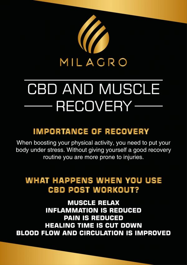 CBD and muscle recovery