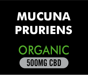 Mucuna Pruriens Powder organic 500mg CBD