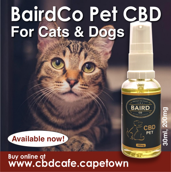 BairdCo Pet CBD - 200mg 3